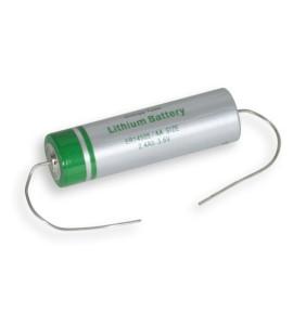 Klok Pool Batterij voor Timer
