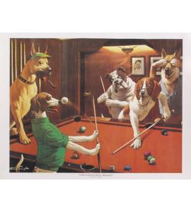 "Poster ""Honden - Scratching"""