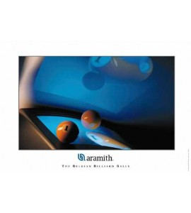 Poster Aramith Video 1-Ball